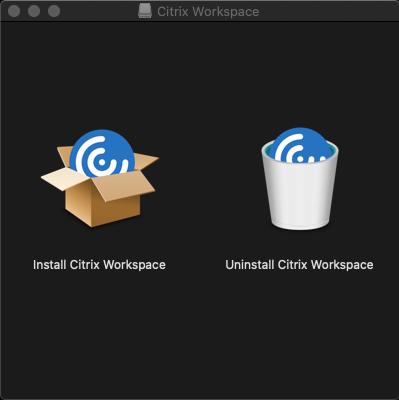Install Citrix workplace